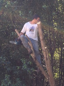 The teacher, Namastê up a tree with a chainsaw.