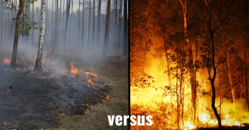 Side by side photos of a controlled fire vs a wild fire.